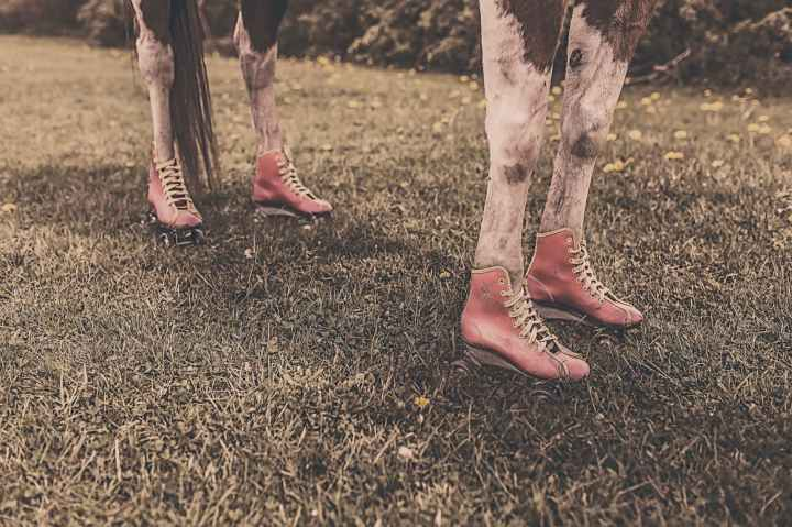 feet legs animal farm